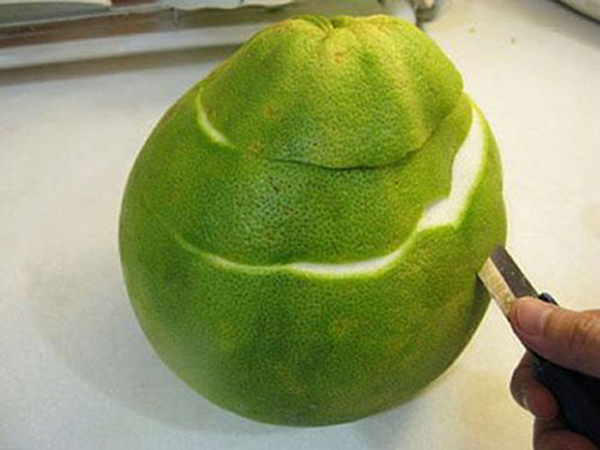 Why not talk about the effect of fresh pomelo peel